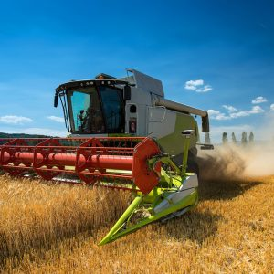 BTS Analyse, conduite et stratégie de l'entreprise agricole (apprentissage)