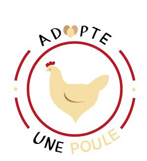 Adopter une poule à Genech, des oeufs assurés !