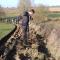 Plantation de 500 arbustres