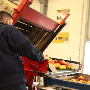 Atelier de fabrication de jus de pommes