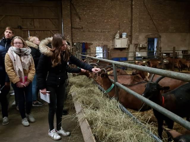 Visite d'une chèvrerie