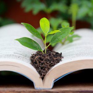 Connaissances des végétaux utilisés en espaces verts