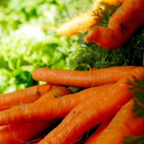 magasin_carotte-salade